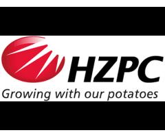 Семена картофеля Голландской компании HZPC Holland B.V.