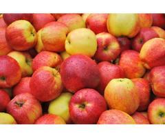 Покупаем яблоки