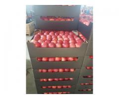 Продаем яблоки от 20 тонн