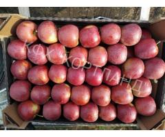 Продаем яблоки сортов: Рубен стар, Айдаред, Принц, Глостер