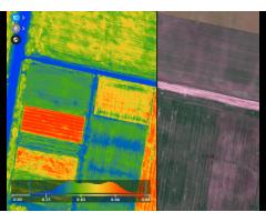 Обследование полей дронами. NDVI индекс